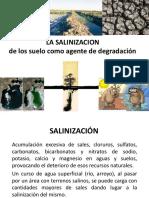 2.1 La Salinizacion