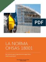 Vision General de Ohsas 18001