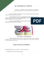 Seminarski  iz Klinicke Fizikalne Terapije.docx