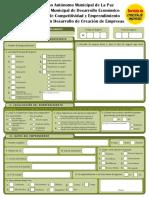 2. Servicios en Idea - Formulario de Registros.pdf