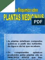bioquímica-PLANTAS-MEDICINAIS