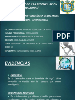 documentos de Auditoria y Evidencias