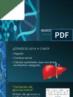 Glucogenesis