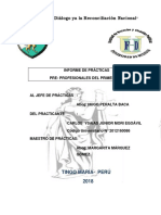 Informe Practicas Carlos Mori