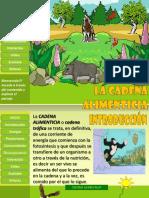 lacadenaalimenticia-120911122649-phpapp01
