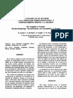 cangahua.pdf