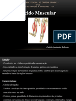 Sist Muscular