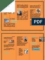 101171796-HUANCAVELICA-docx