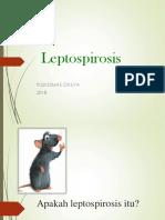 penyuluhan-leptospirosis 2016.ppt