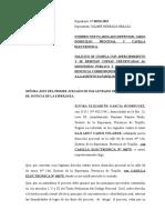 Apersonamiento Ministerio Publico Elvira Garcia