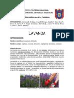 2Proyecto Lavanda 2018 Final Propagacion y Cultivo