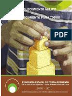 ENRIQUECIMIENTO_AULICO.pdf