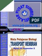 351165299 Transport Membran Ppt