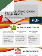 Rutas de Atencion Salud Mental [Autoguardado]
