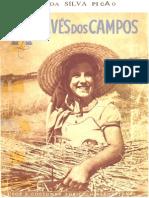 1904 - José da Silva Picão - Através dos Campos