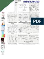 Tecnica natacion.pdf
