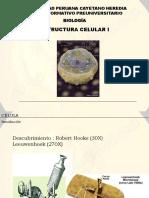 documento2008-I_CELULA1.pdf