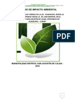 Estudio de Impacto Ambiental Pavimento Masma Nvz222