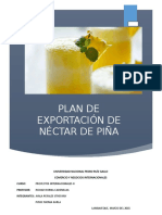 271455823 Proyecto Nectar de Pina Docx