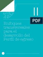 2 CNEB_Capítulo II Enfoques Transversales