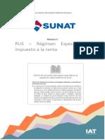 Impuesto a La Renta_NRUS RER