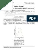 SOL.AMORTIGUADORA.pdf