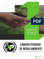 CÁMARA UNIDO.pdf