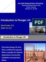 Introduction-to-Plunger-Lift-Feb-2013.pdf