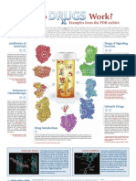 Drug Poster Small
