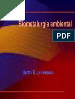Biometalurgia Ambiental