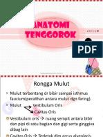 dokumen.tips_95794294-anatomi-tenggorokppt.ppt