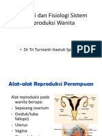 Alat Genital Wanita 1