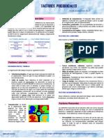 ICHA FACTORES.pdf