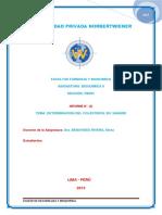 2 Informe de Bioquimica 2