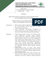1.1.1 Ep 1 SK Program lansia.doc
