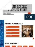 4. Struktur & Organisasi DNA