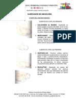 Material Estimulación Temprana Guía de ejercicios