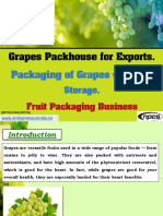 Grapes Packhouse for Exports
