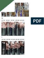 Prak.miikrobiologi 02-10-2018