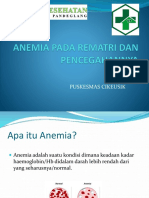 Anemia Pada Rematri Dan Pencegahannya