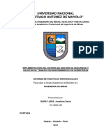 334571561-Informe-de-Practicas-Profesionales-pdf.pdf