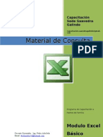 Manual Excel Adptado