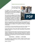 informe de fisiologia.docx