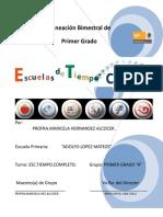 77488396-Planeacion-d-Tiempo-Completo.doc