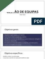 Manual Gestao de Equipas