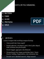 b.1) Arrchaea
