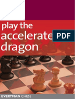 AcceleratedDragon-PeterLalic