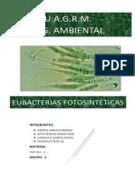 Eubacterias Fotosintéticas