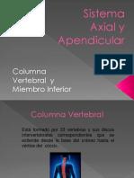 Sistema Axial y Apendicular.pptx