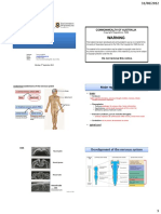 ANAT1005 CNS1 Brain 2012 6 slides.pdf